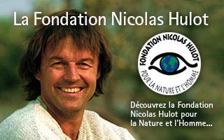 """L'image """"http://s.tf1.fr/mmdia/i/14/1/fondation-nicolas-hulot-2414141.jpg?v=1"""" ne peut être affichée car elle contient des erreurs."""