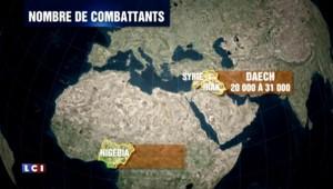 Offensive du Nigeria et du Tchad contre Boko Haram