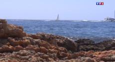 Le 13 heures du 30 juillet 2015 : Dans l'intimité des criques du Cap d'Antibes - 1279
