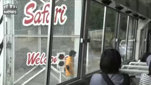 Il a grimpé dans le véhicule : un ours tue une employée d'un parc animalier au Japon