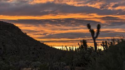 Illustration. Un couché de soleil dans le désert au sud des Etats-Unis