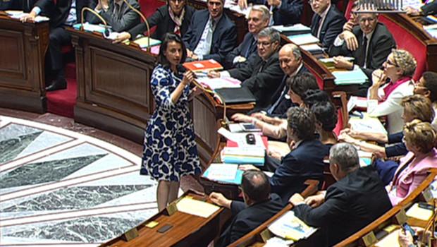 Cécile Duflot a été accueillie par des exclamations mardi à l'Assemblée nationale sur certains bancs de la droite parce qu'elle portait une robe.