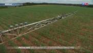 Pesticides : les dangers de leur utilisation