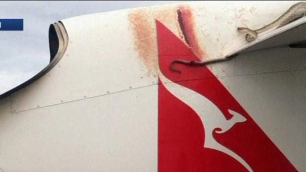 Un python voyage sur l'aile d'un avion Qantas.