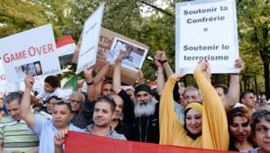 Plusieurs personnes ont manifesté dimanche à Paris en soutien de l'action de l'armée égyptienne. Pour eux, l'attitude de la France revient à soutenir le terrorisme.