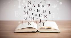 dictionnaire mot vocabulaire français lettre langage langue