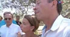 Le 13 heures du 30 juillet 2015 : Corse : la bactérie Xylella se propage, les producteurs d'oliviers en colère - 544