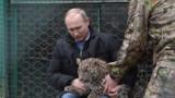 JO de Sotchi : Poutine présente des léopards au CIO