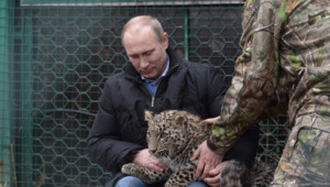 Vladimir Poutine présente un léopard au CIO avant les JO de Sotchi, 4/2/14