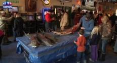 Dans le Wisconsin, les pêcheurs peuvent attendre (très) longtemps l'esturgeon