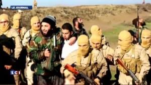 Syrie : un avion militaire de la coalition anti-jihadiste abattu par l'Etat islamique