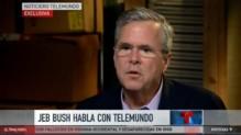 Jeb Bush, sur Telemundo, le 27/8/15