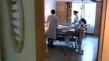 Grippe aviaire : fausse alerte à Montpellier