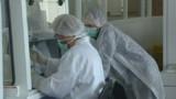 Des gènes pourraient maîtriser le développement du sida