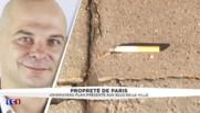 Nouvelles sanisettes, nettoyage participatif... le plan pour la propreté de Paris détaillé