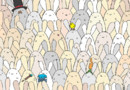 Trouvez l'œuf de Pâques parmi ces lapins ! Le jeu de Dudolf