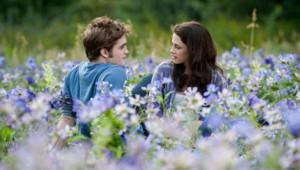 Twilight - Chapitre 3 : Hésitation de David Slade - Robert Pattinson et Kristen Stewart
