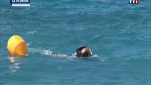 La Réunion : un défenseur des animaux nage avec les requins