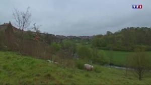 Plus beaux villages de France (3/5) : Châtillon-sur-Saône, un décor somptueux au service de l'histoire