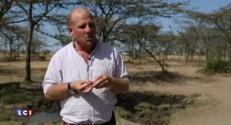 Kenya : le rhinocéros blanc, une espèce (vraiment) en voie d'extinction ?