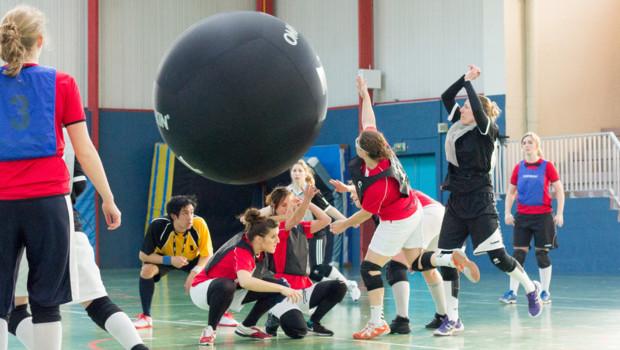Kin-Ball 2