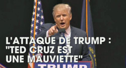 Donald Trump Capture