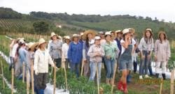 Les habitantes du village Noiva do Cordeiro