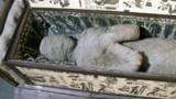 Il découvre une momie humaine dans le grenier de ses grands-parents