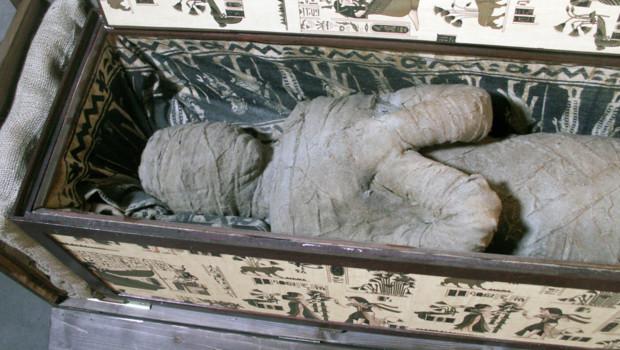 Soumise à un scanner, la momie découverte s'est révélée être celle d'un être humain dont le crâne est bien préservé même si une flèche semble lui avoir transpercé l'orbite gauche.