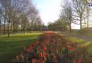 Keukenhof, le jardin extraordinaire des Pays-Bas