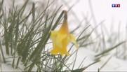 Ardèche : un week-end de printemps sous la neige