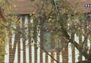 Maison de personnes illustres : Ici à vécu Pierre Corneille