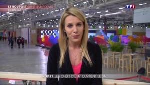 """COP 21 : """"La France a tiré les leçons"""" des échecs de Copenhague"""