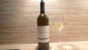 Les Trélans, Alain Chabanon, vin blanc