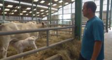 Le 13 heures du 16 septembre 2014 : Les �veurs de bovins produisent �erte - 1094.371504058838