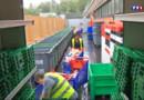 Le 20 heures du 27 août 2015 : Les association peinent à récolter les dons de nourriture de grandes surfaces - 598