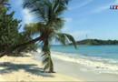 Les Antilles à la reconquête des touristes