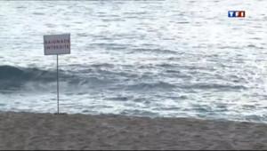 Le 13 heures du 18 juillet 2013 : Ile de la R�ion : la traque aux requins - 220.533