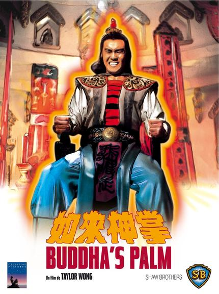 [Shaw Brothers] Buddha's Palm VOSTFR DVDRIP XVID preview 0
