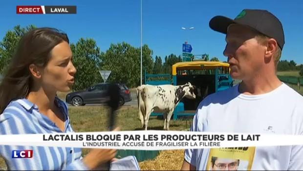 Crise du lait : le siège de Lactalis se poursuit, les négociations reprennent