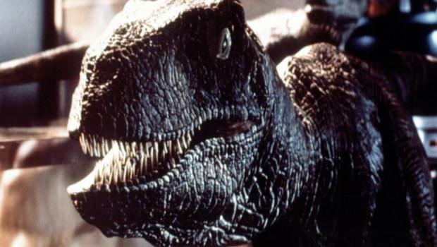 Image Jurassic Park de Steven Spielberg