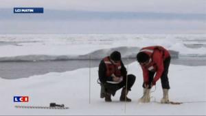 Fonte-record de la banquise cet été dans l'océan Arctique