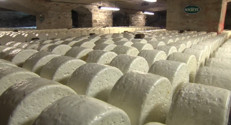 Le 20 heures du 21 septembre 2014 : Journ� du patrimoine : d�uvrir comment est fabriqu�e roquefort - 1975.2418164062503