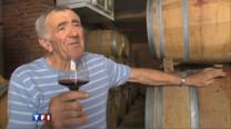 Dans le vignoble de Fronton, en Haute-Garonne, Marc Penavayre, vigneron a totalement abandonné les pesticides et autres désherbants pour se convertir au bio.