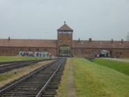 "Auschwitz-Birkenau : la ""porte de la mort"", lieu de visite"