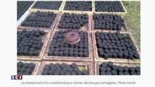 Cameroun : des étudiants créent un charbon écologique