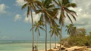 Plage de Guadeloupe/TF1