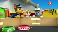 Paw patrol en streaming