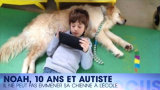 Pas de chien, pas d'école… le combat d'un jeune autiste pour être scolarisé : regardez Focus #60