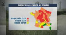 La carte des risques d'allergie au pollen du 19 avril 2015.